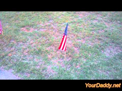 Memorial Day Weekend Flag Theft
