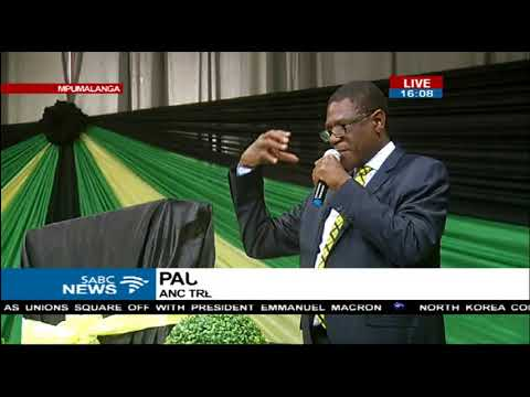 Paul Mashatile pays tribute to Mama Winnie