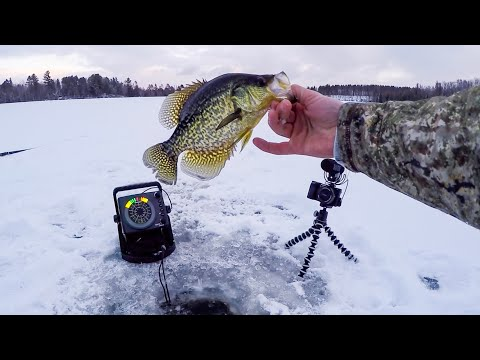 EARLY Wisconsin Ice Fishing 2018 | Schooling Crappies
