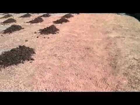 Preparaci n de la tierra para sembrar las patatas youtube - Preparacion de la tierra para sembrar ...