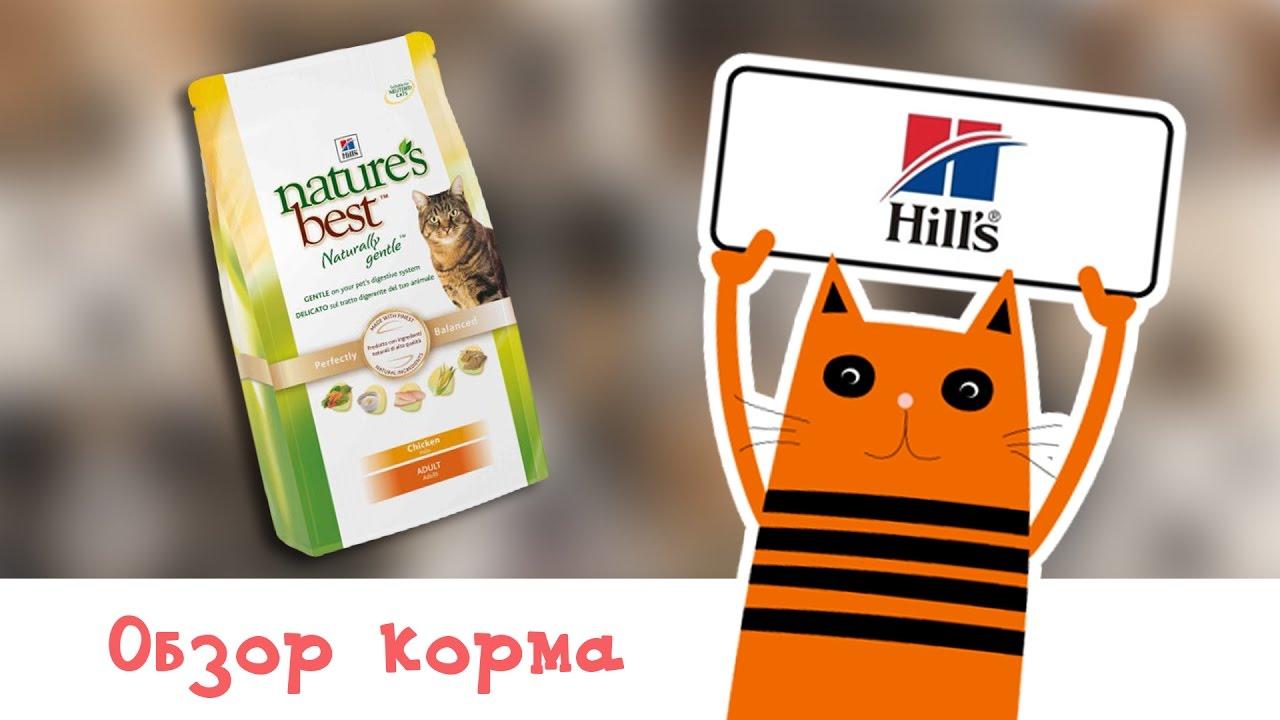 Лучшие сухие корма для собак по выгодным ценам. Наш интернет-магазин предлагает купить корм премиум класса для собак с доставкой в харьков, киев, донецк и по украине. Звоните: (095) 374 33 43.