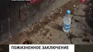 В Москве зоозащитники пытаются спасти бездомную кошку