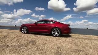 2018 Mustang GT - Oesterdam