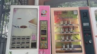 자판기 주크박스