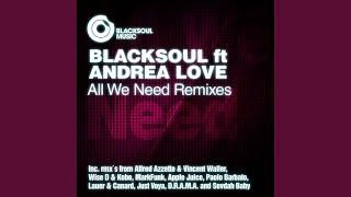 All We Need (Sevdah Baby Remix)
