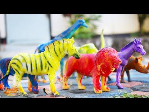 มารู้จักสัตว์ป่าจากของเล่น | ระบายสีตุ๊กตาสัตว์ป่า เรียนรู้สี Learn Animals with toys