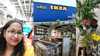 IKEA Home Furnishings Haul // Random stuff // plants and pots etc