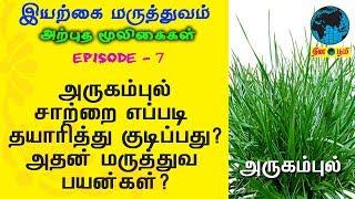 Arugampul | அருகம்புல் | Sidda Maruthuvam | Nattu | Iyarkai | Bermuda Grass | Cynodon Dactylon