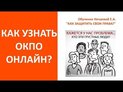 ОКПО по ИНН узнать онлайн. Нечаева Елена