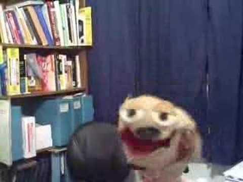 Dumb Dog Sings: Drinkin' Bone by Tracy Byrd