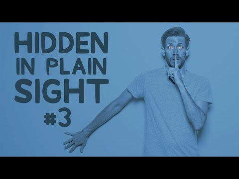 You'll Never Guess Where He's Actually Hiding • Hidden in Plain Sight #3