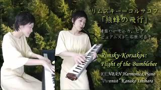 リムスキー=コルサコフ「熊蜂の飛行」 石原可奈子 [鍵盤ハーモニカ、ピアノ] Rimsky-Korsakov: Flight of the Bumblebee,Kanako Ishihara