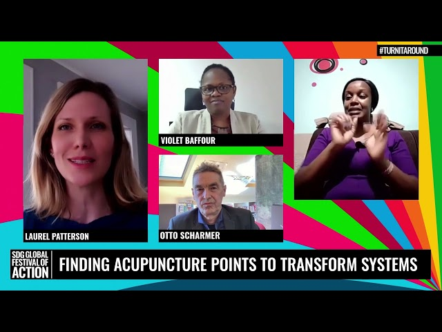 In Conversation: Finding Acupuncture Points to Transform Systems (French)