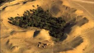 «El Oued, vue du ciel», par Yann-Arthus Bertrand