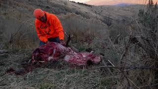Utah General Season Deer Hunt - West Desert/Tintic