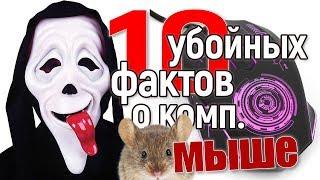 10 прикольных фактов о компьютерной мыши, от которых плачешь... #computer #изобретение #прикол
