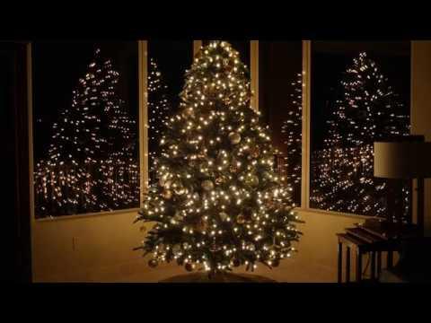 Cheap Pre Lit Christmas Trees - YouTube