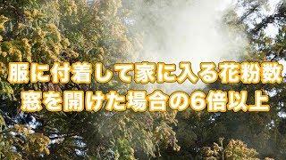 【お天気雑学】花粉の侵入経路は窓より服への付着