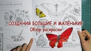СОЗДАНИЯ БОЛЬШИЕ И МАЛЕНЬКИЕ / Обзор раскраски