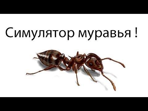 Симулятор муравья !