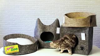 Лежаки Для Котов. Все О Домашних Животных