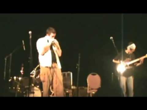Otavio Castro: brazilian diatonic harmonica