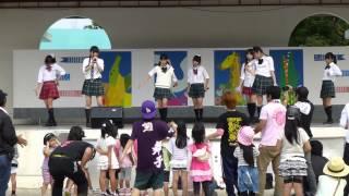 5/5 沖縄こどもの国 HP http://www.summit-pro.jp/ bot Twitter https:/...