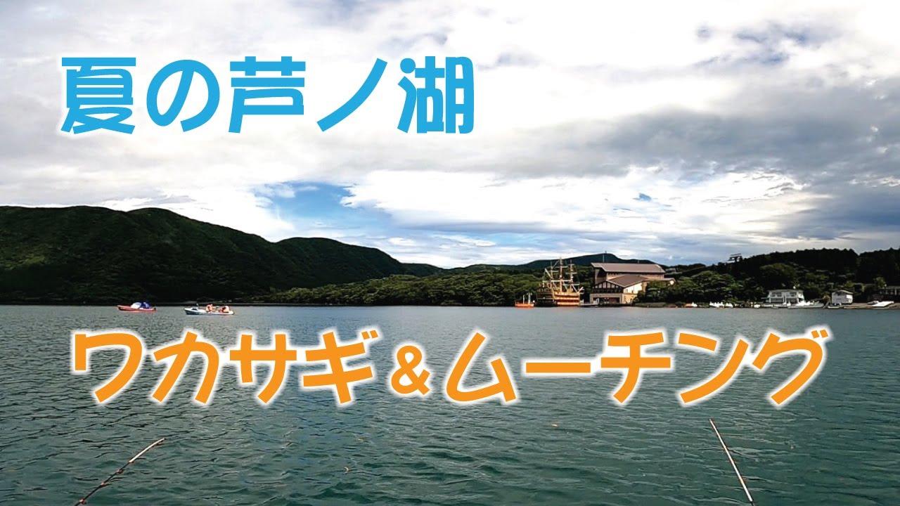 夏の芦ノ湖 ワカサギ&ムーチング