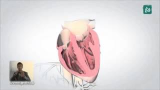 الحمل ومشاكل القلب