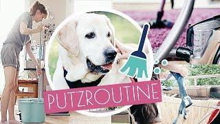 MEINE PUTZROUTINE | Sauberer Haushalt mit Hund |Putzen TIPPS PUTZROUTINE