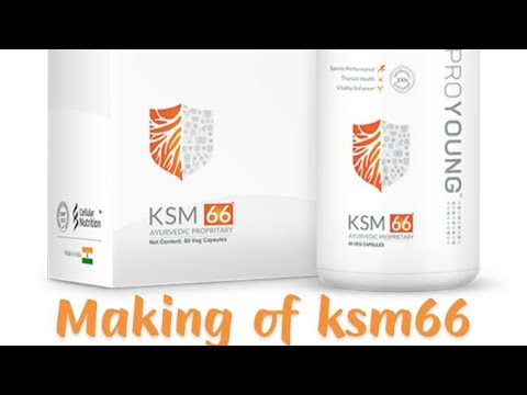 MAKING OF PROYOUNG KSM 66 (World's best ASHWAGANDHA)।। by Proyoung Baneet  Sahni