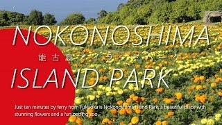 Nokonoshima Island Park (能古の島アイランドパーク)