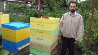 Грызут ли пчелы пенополистирольный улей