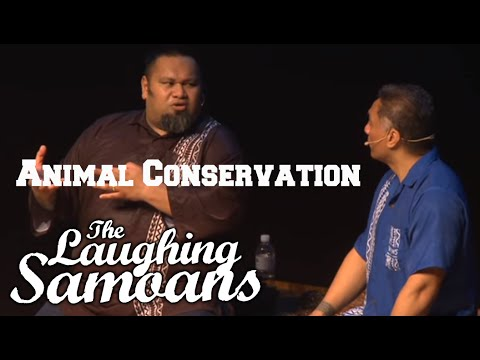 "The Laughing Samoans - ""Animal Conservation"" from Greatest Hits"