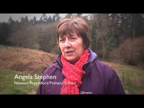 JUBILEE PLANTATION - NEWTON POPPLEFORD, EAST DEVON
