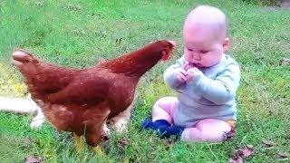 Babies Meeting Animals Fails