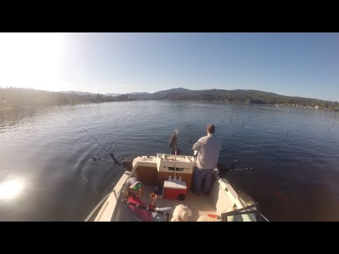 Lake Whatcom Kokanee Fishing Spring 2019