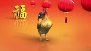 Video ayam lucu