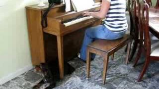American Cocker Spaniel Singing