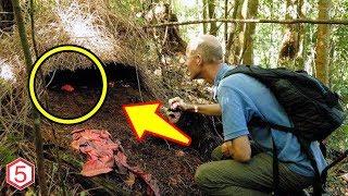 Awalnya Pria ini Temukan Gundukan Di Sebuah Hutan , Tapi Di Kaget sewaktu Dia Melihat Isinya