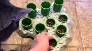 The Stimulo interactive feeder for cats by Aikiou