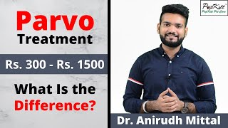 Parvo Virus Infection Treatment and Cost | Pet Care India | @Pupkitt Pet Care