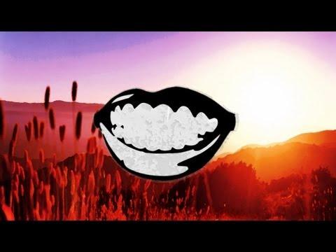 Fat Freddy's Drop - Flashback (Drauf & Dran