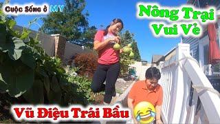 """❀//Vlog 235// Tham Quan """"Nông Trại Vui Vẻ"""" Khi Thú Vui Là Được Nhìn Thấy Khu Vườn Nhỏ Ra Hoa Kết Quả"""