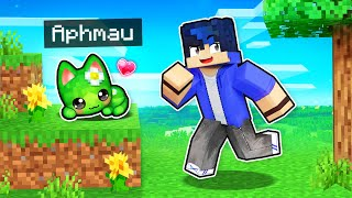My SECRET Cute Kitten CHEATS In Minecraft!