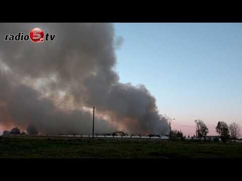 Pali się chlewnia | Radio 5