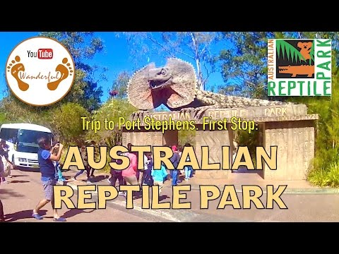 Wanderful: The Australian Reptile Park | Somersby, New South Wales | Sydney