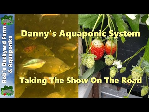 Danny's 3000L/790gal Aquaponic System. Taking The Show On The Road.