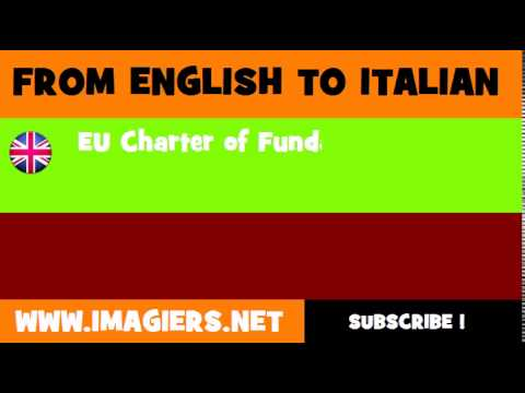 How to say EU Charter of Fundamental Rights in Italian