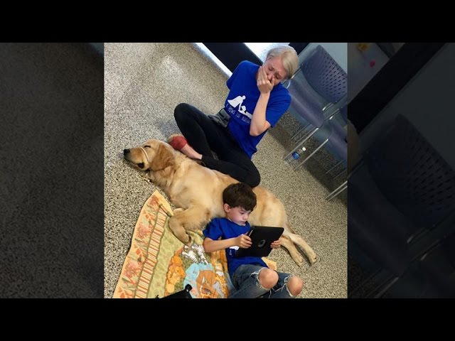 Photo Shows Mom Overcome with Emotion as Son with Autism Bonds with Service Dog
